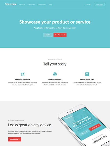 showcase-pro 12 Best Marketing WordPress Themes for Bloggers & Small Business Owners