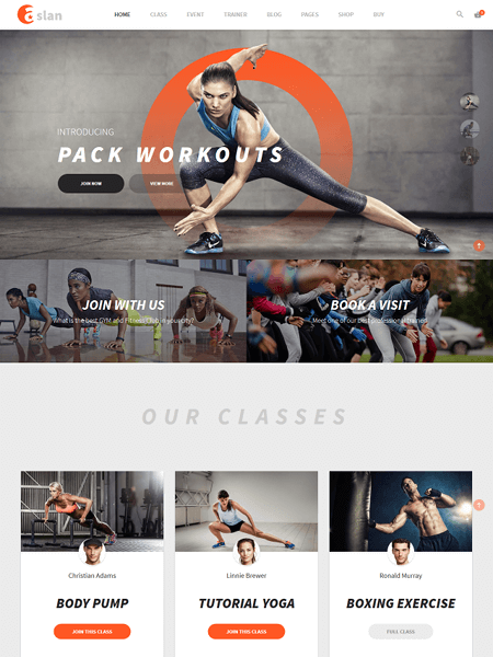 aslan 11 Powerful Sports & Fitness WordPress Themes for 2017