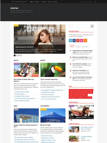 spartan 16+ Best AdSense Optimized WordPress Themes