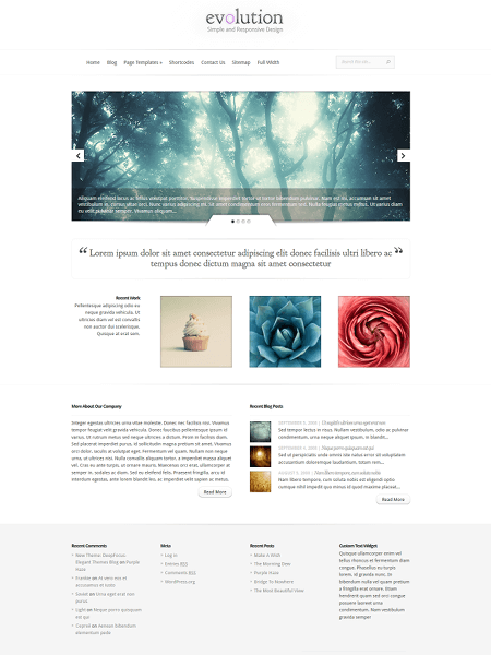 evolution 18 Best Minimalist WordPress Themes For Business, Portfolio, and Blogs
