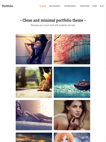 portfolio 18 Best Minimalist WordPress Themes For Business, Portfolio, and Blogs