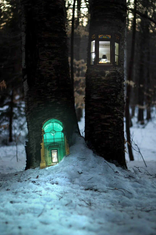 urban doors fit on trees make woodhouses by daniel barreto
