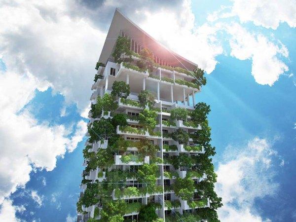 vertical garden skyscraper clearpoint residencies cultivate vertical gardens in sri lanka