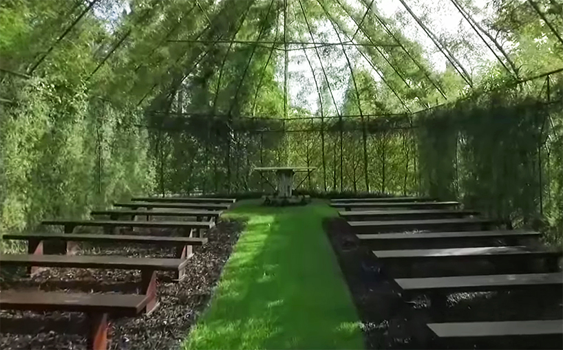tree church new zealand barry cox