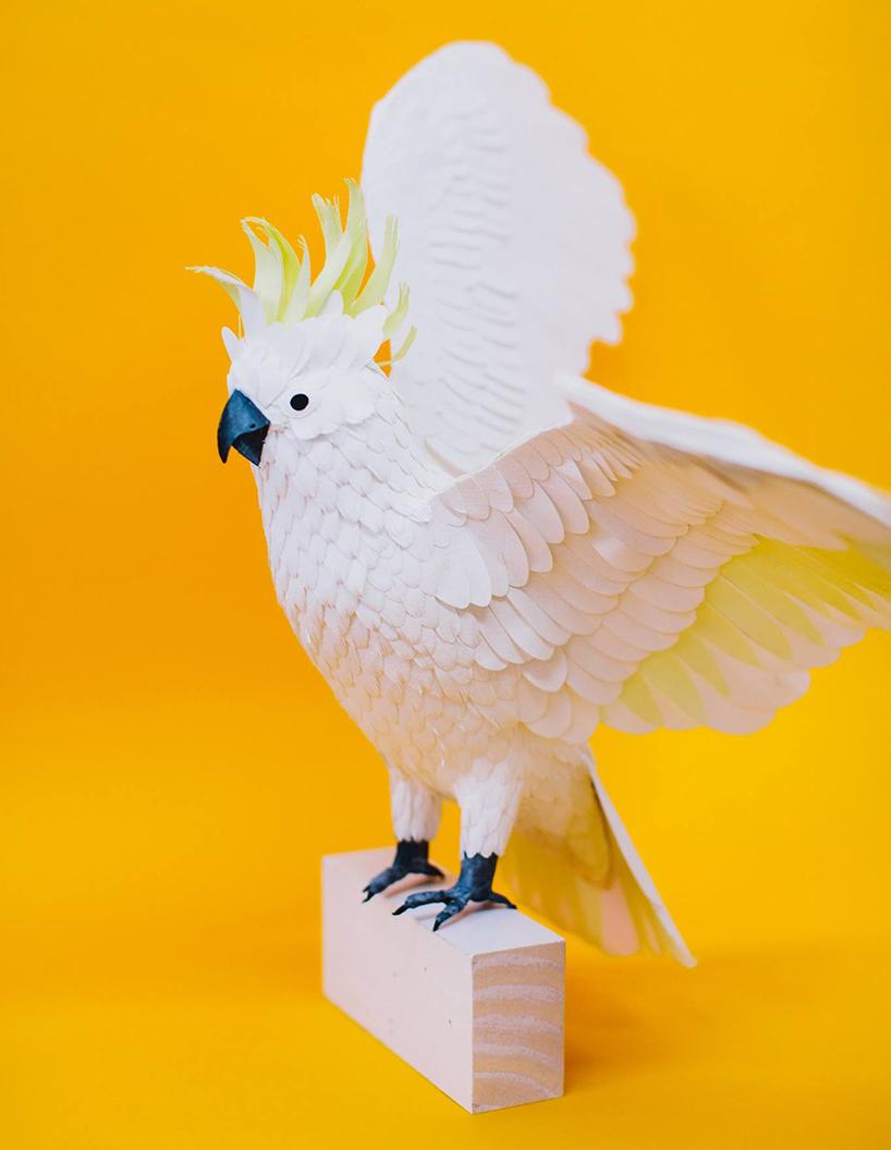 diana-beltran-herrera-paper-aviary-birds-designboom-02