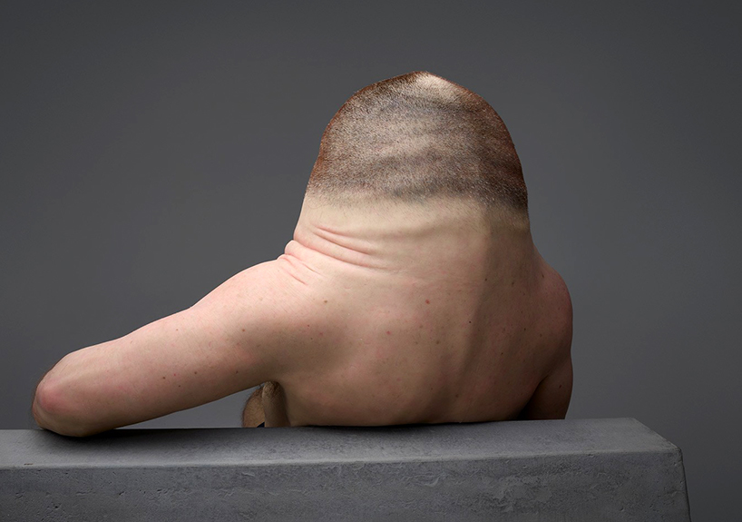 patricia-piccinini-graham-transport-accident-commission-designboom-10