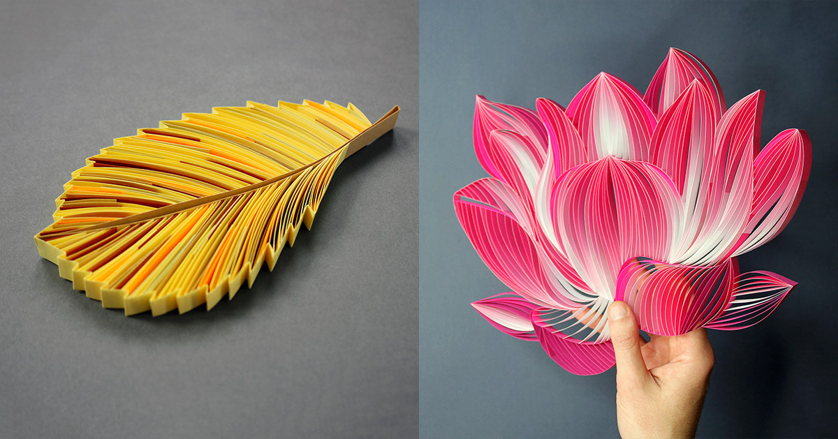 Judith Rolfe S Paper Quilled Floral Artworks Capture The Diversity In Nature