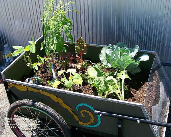 moving urban garden