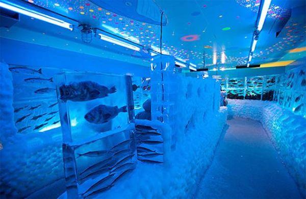 08 Ice Aquarium