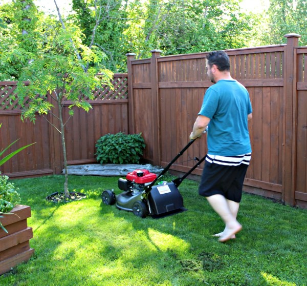 Mowing the lawn with our new honda 3-in1 lawn mower