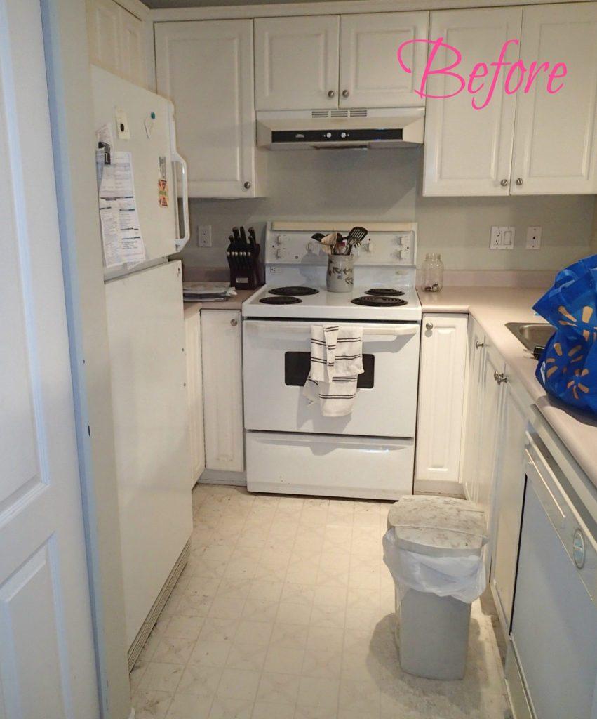 kitchen before, condo kitchen, Greg's condo