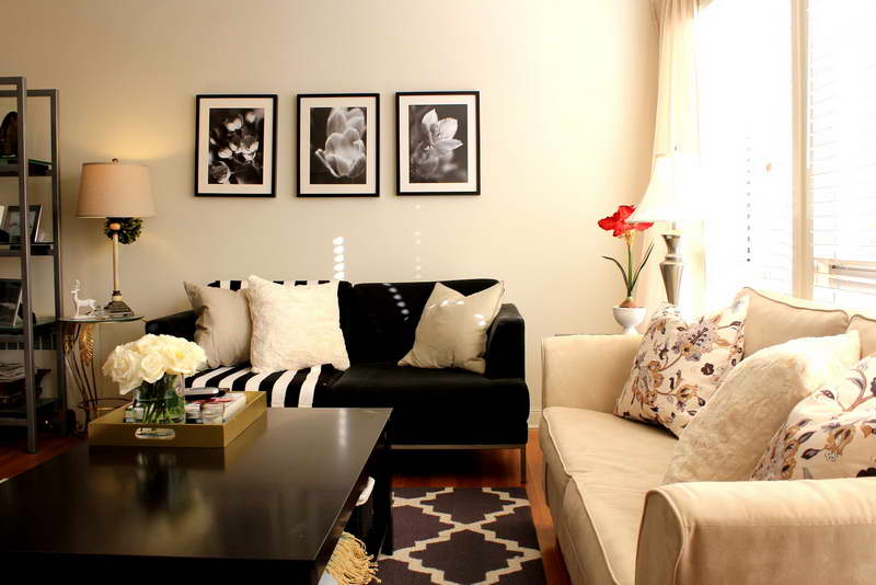 good-1-idea-to-decorate-living-room-on-living-room-living-room.jpg