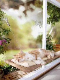 Cama suspensa para gatos