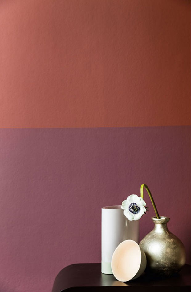 colours-futures-tintas-coral 14