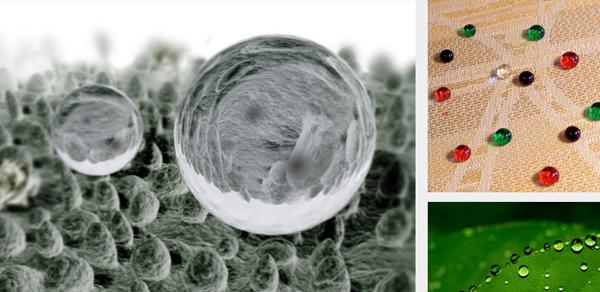 As folhas de lotus possuem um potente sistema repelente que pode nos ajudar a descobrir formas de limpar (e manter limpo) sem necessidade de detergentes ou outros agentes de limpeza.