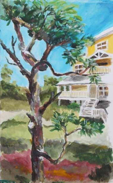 susan1 tree