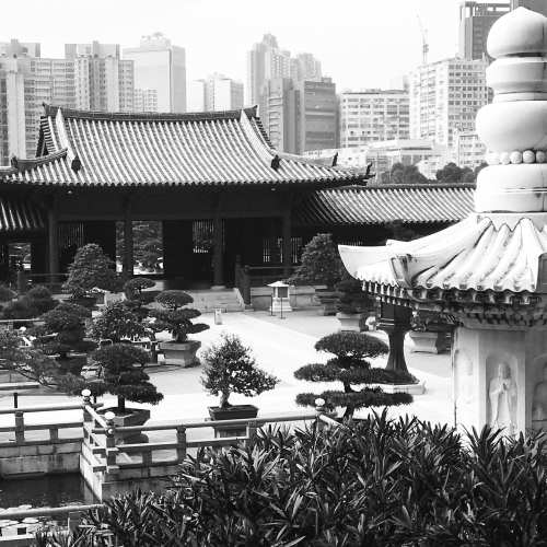 Chin Lin Nunnery, Hong Kong