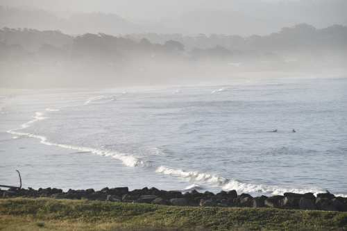 Foggy Morning, Half Moon Bay, CA