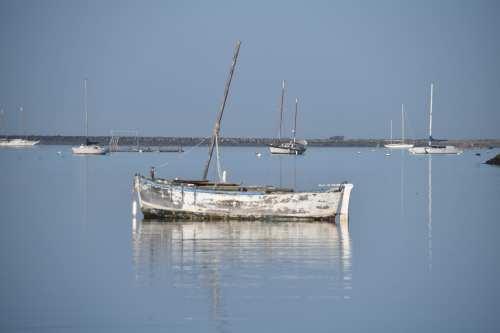 Reflections Half Moon Bay