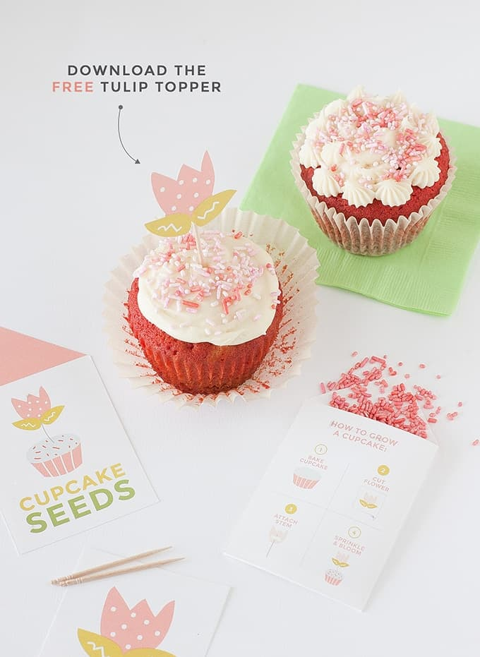 """Learn """"How to Grow A Cupcake"""" with these free springtime printables by Design Eat Repeat! Includes the instructions on how to create these """"Cupcake Seed"""" packets, that include a tulip topper and sprinkles! Fun idea for a party activity or party favor!"""