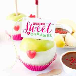 Valentine's Day Caramel Apple Kit