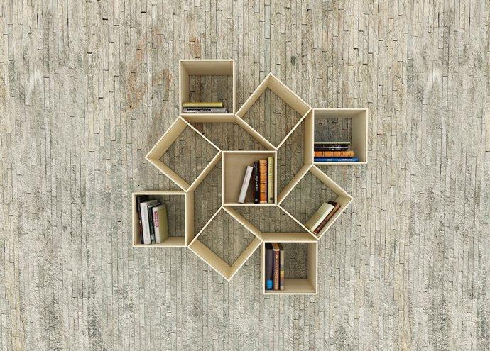 bookshelf-designrulz-002
