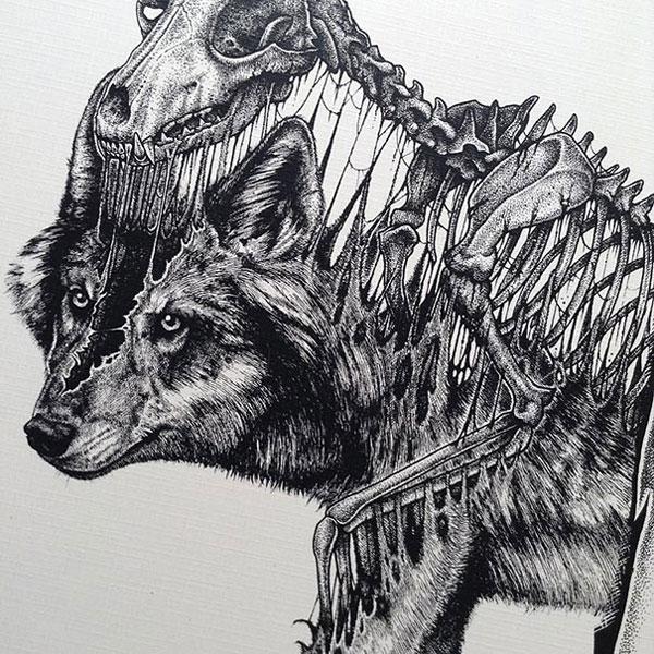 -misterioso-horripilante-gótico en blanco y negro de animales-cráneo-art-paul-jackson-17