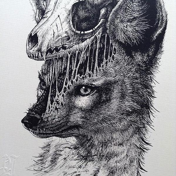 -misterioso-horripilante-gótico en blanco y negro de animales-cráneo-art-paul-jackson-19