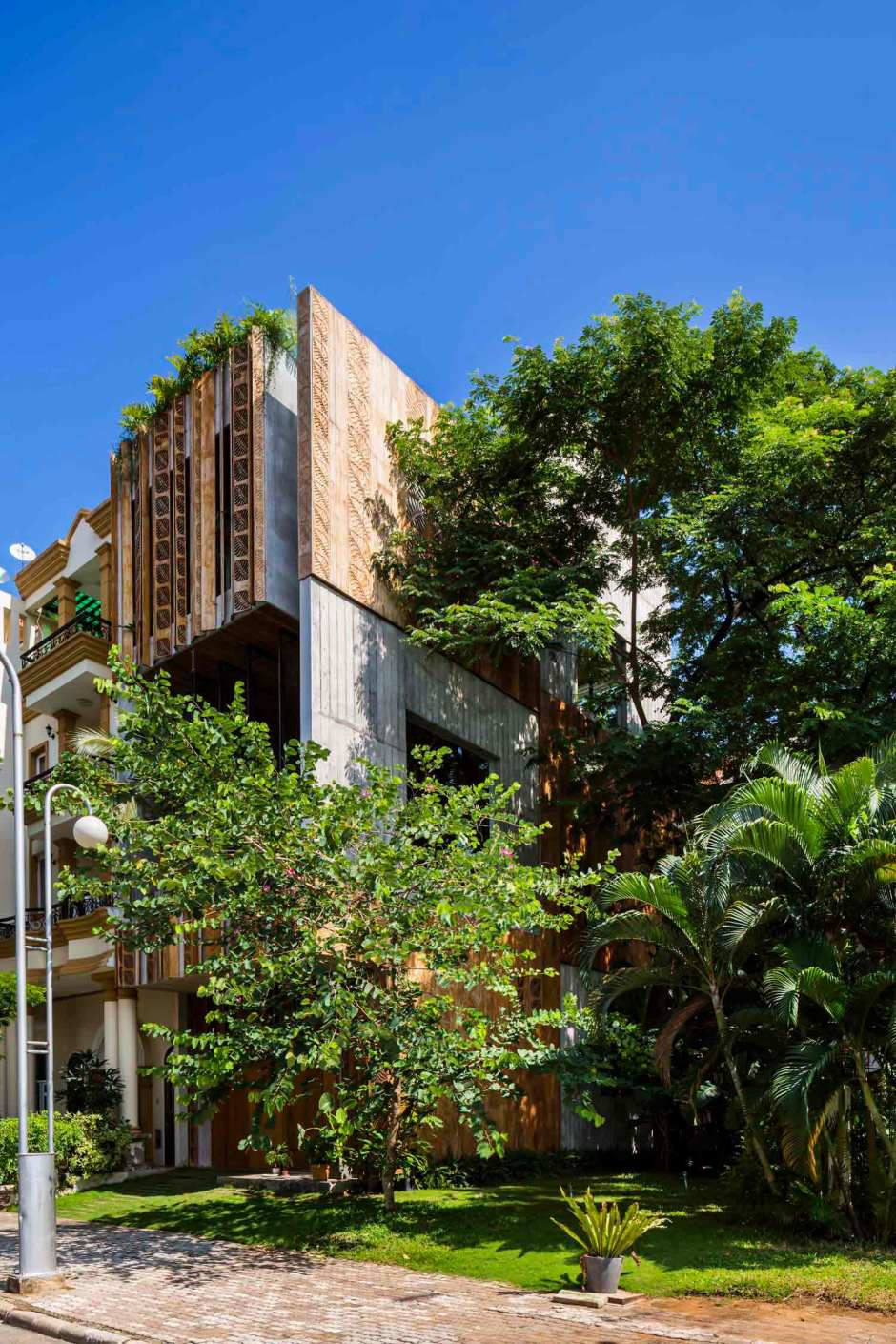 Nishizawa Architects townhouse shade from large park trees