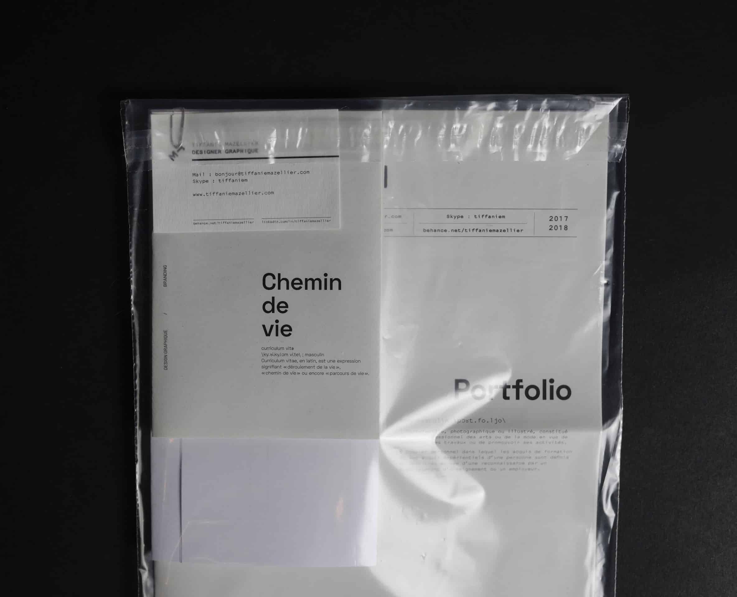 cv portfolio design ideas