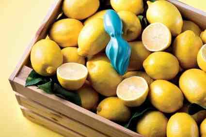 Octo citrus reamer
