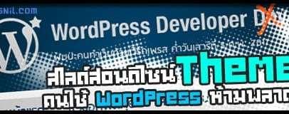 d43 wpdevnight wordpress theme design slide