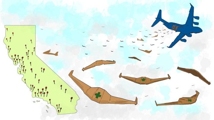 Swarm of drones