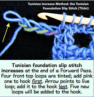 Tunisian foundation slip stitch: at the end of a Forward Pass, chain, remove last loop from hook, insert hook in a ch loop, then put live loop back onto hook. An increase of one stitch.