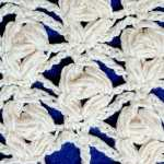 Rose-like ornately clustered puff stitches on a chain-mesh background.