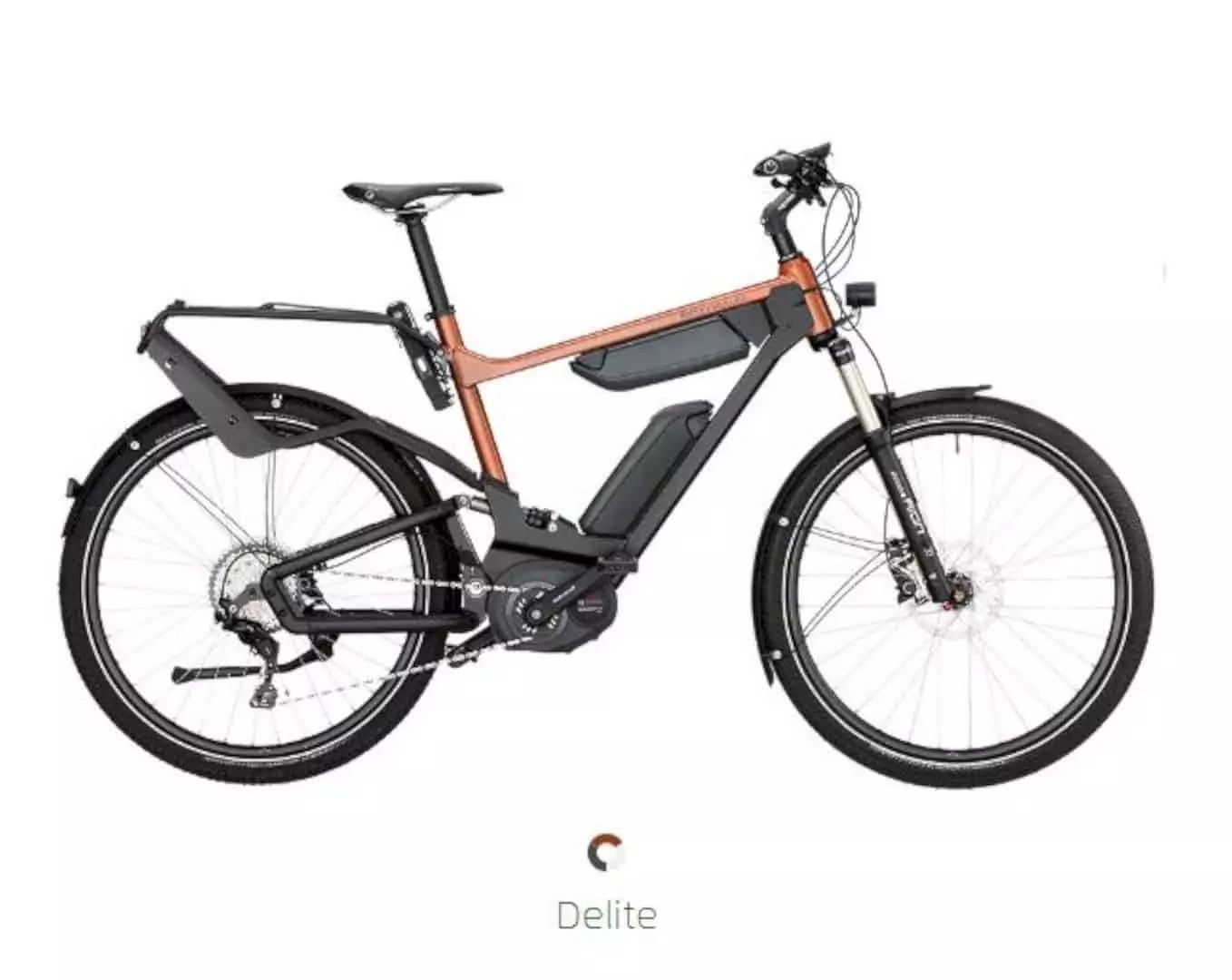 E-Bike: A Bicycle with Two Accelerators from Riese and Müller