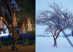 Outdoor Holiday Decorating Ideas HeqL
