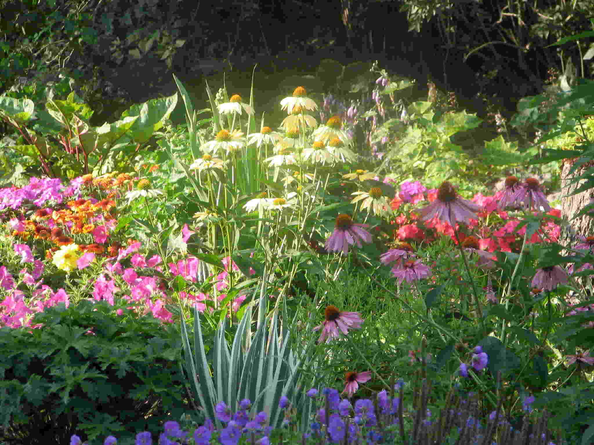 Perennial garden design ideas design on vine perennial garden design ideas mightylinksfo