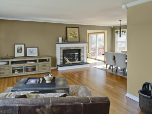 Popular Living Room Colors DoRk