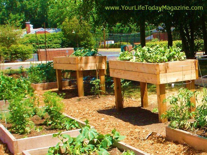 Raised Garden Design