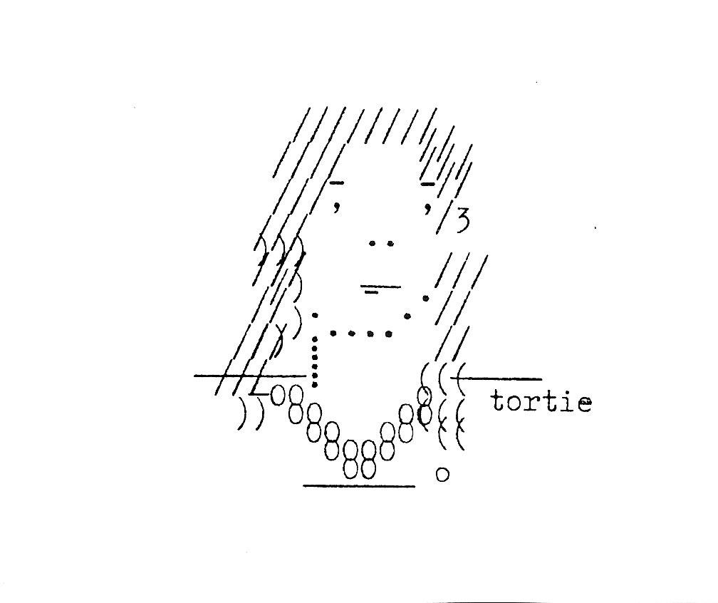 Typewriter_Art_James_NFJ_Tortie