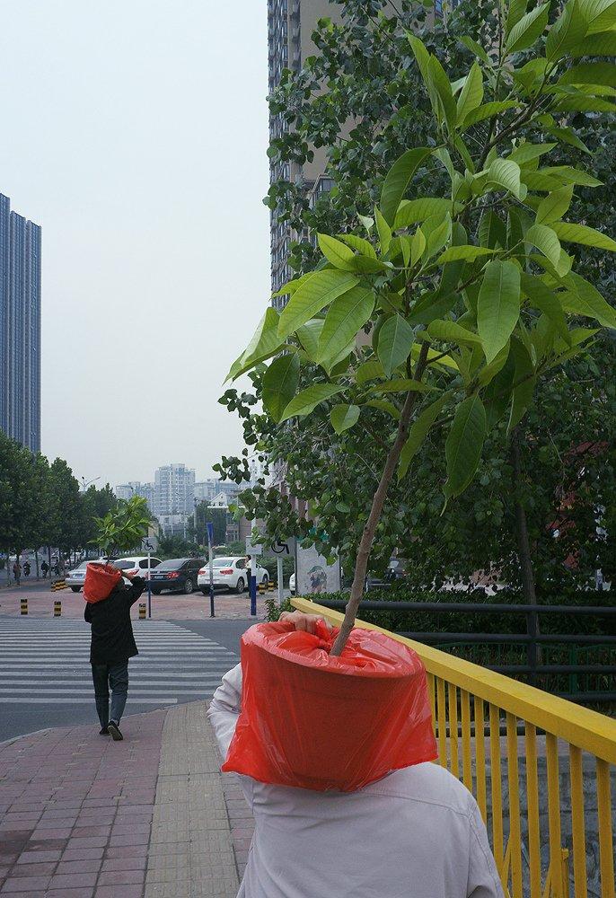 Liu_Tao_street-photo-designplayground-11