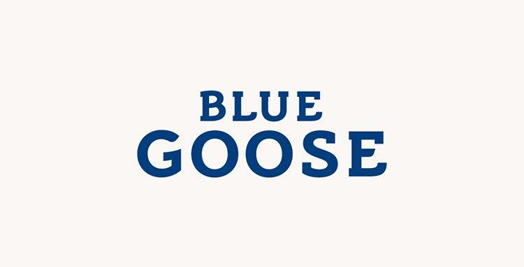 Blue_goose_designplayground_06