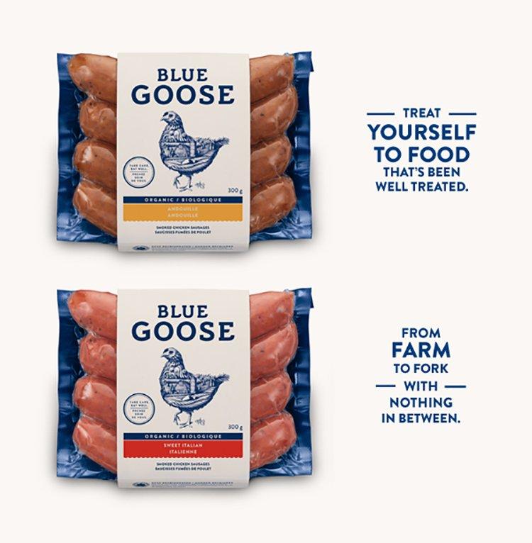 Blue_goose_designplayground_10