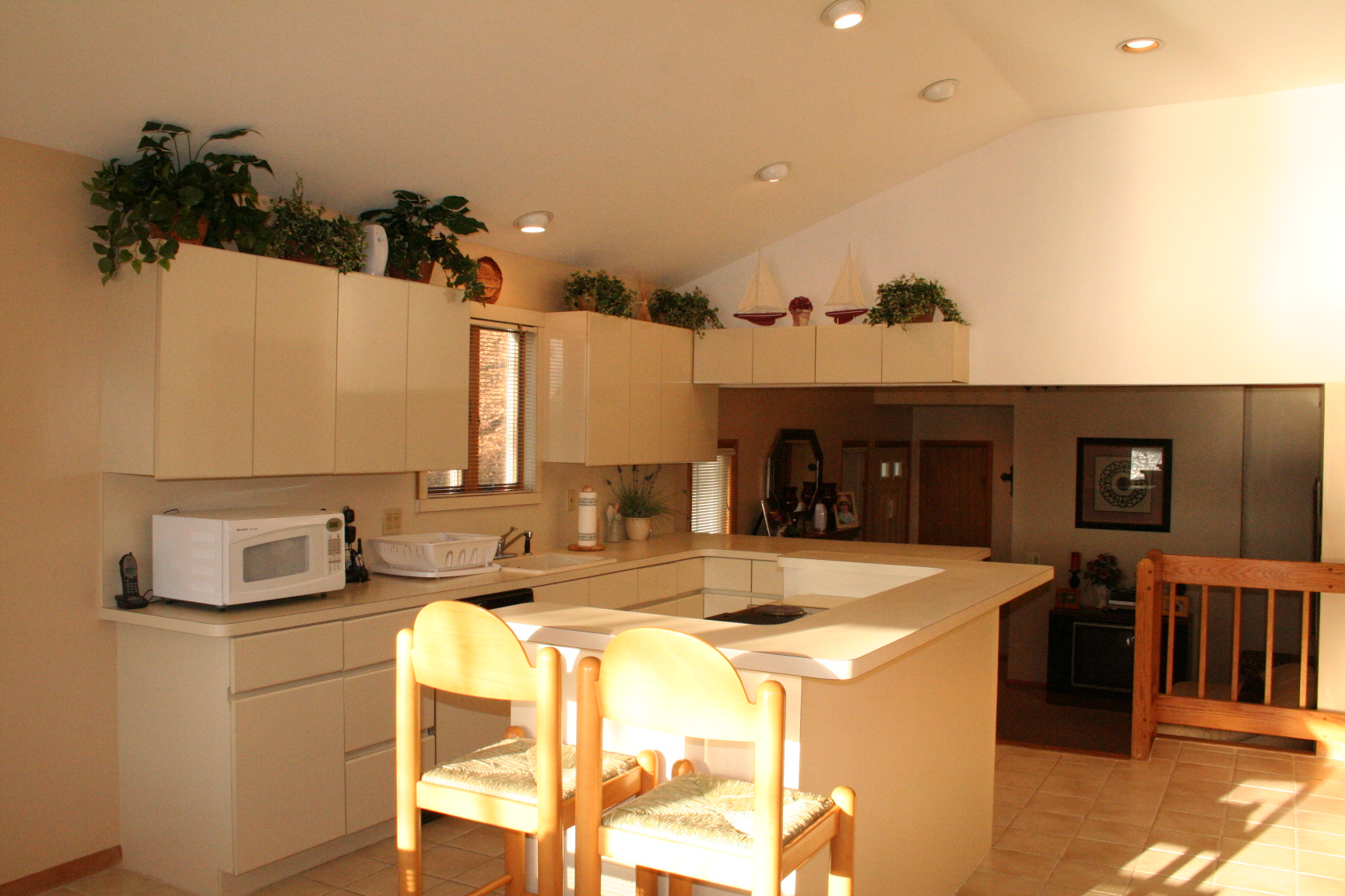Kitchen Design Pictures India
