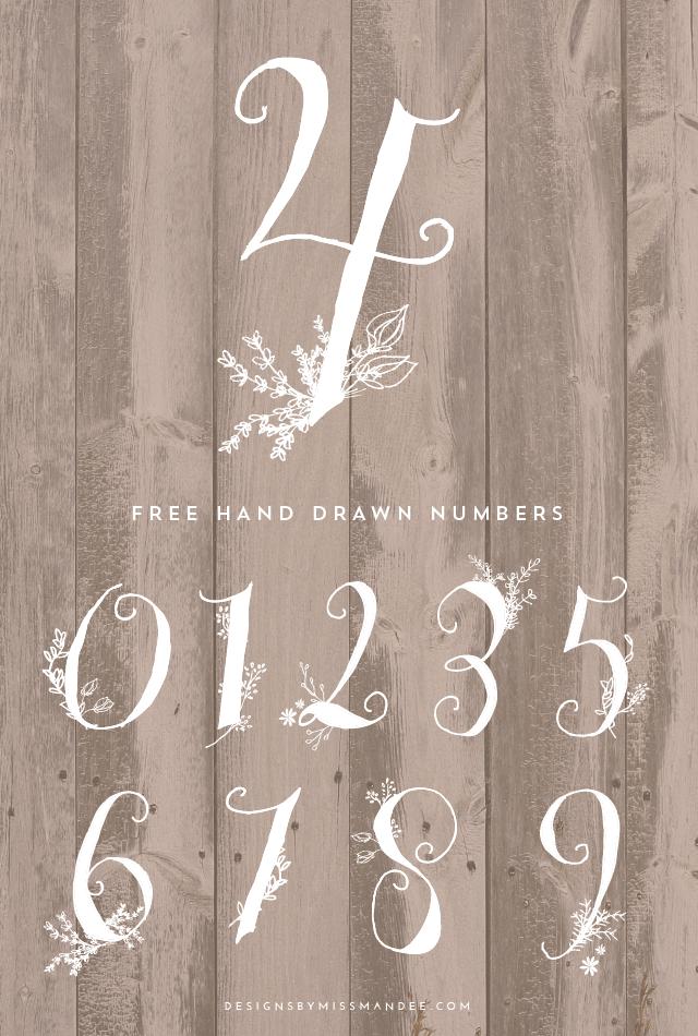 Stunning Hand Drawn Numbers