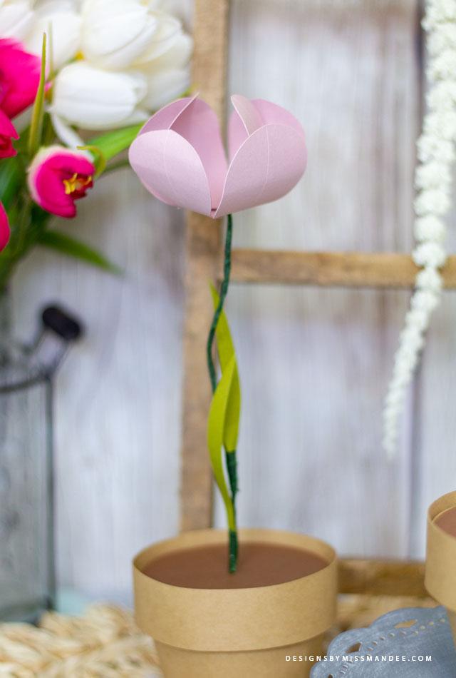 Flower Pot Boxes