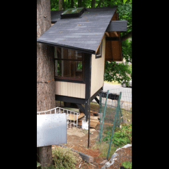 Treehouse - After