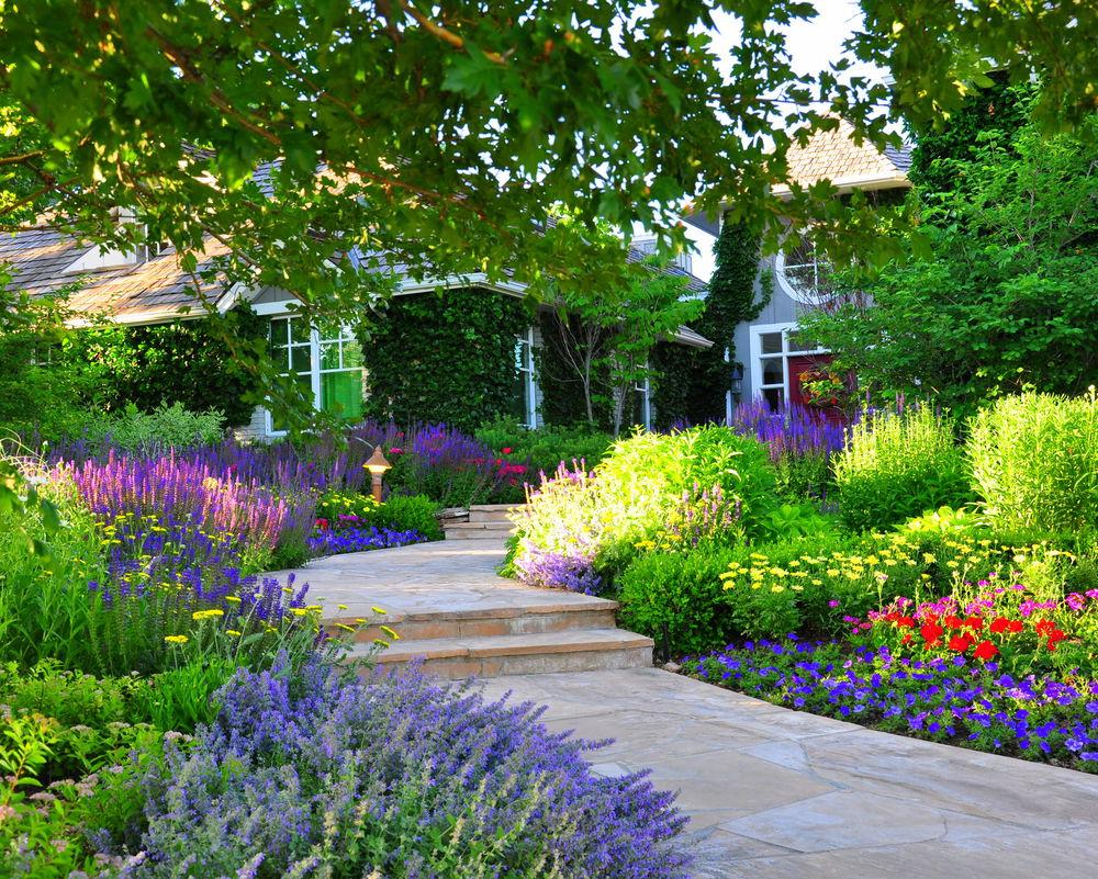 Denver Garden Landscape & Design   Designscapes Colorado on Landscape Garden Designs For Small Gardens id=80972
