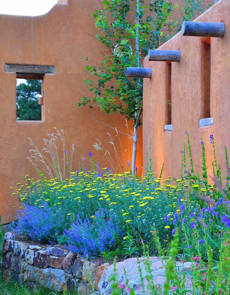 Landscape Design Denver Xeriscape